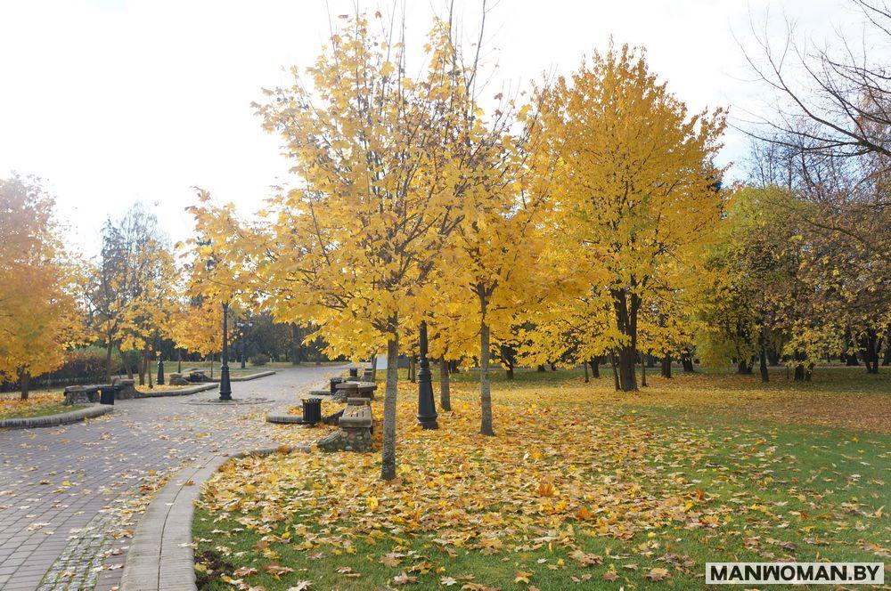 loshickij-park-osennyaya-progulka_13