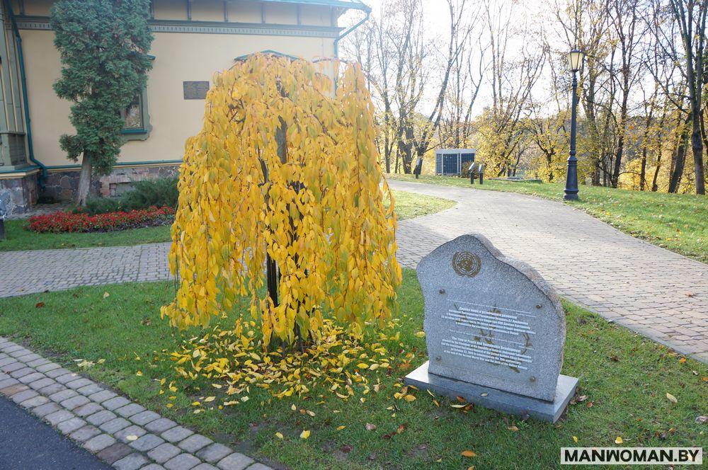 loshickij-park-osennyaya-progulka_22