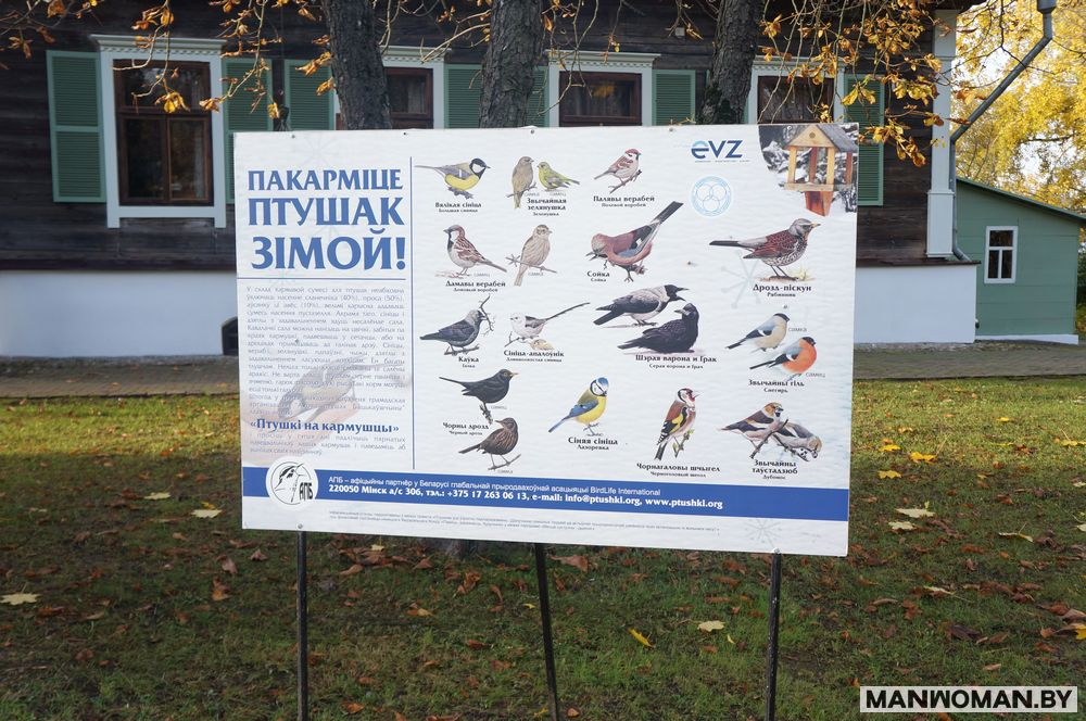 loshickij-park-osennyaya-progulka_24