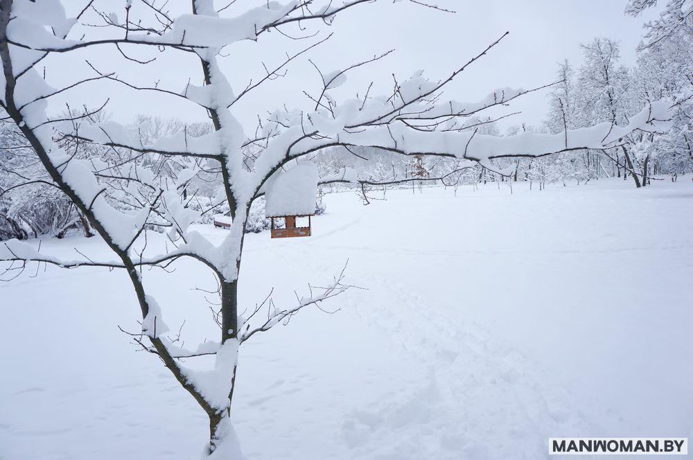 snezhnaya-zima-v-minske-na-rozhdestvo_12