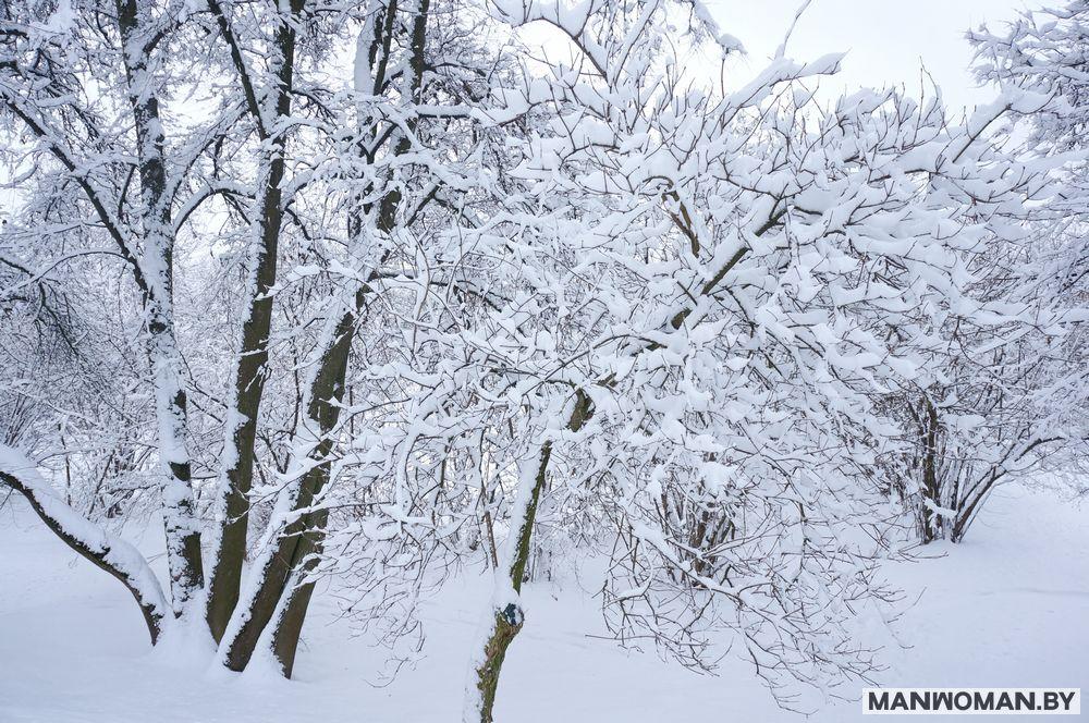 snezhnaya-zima-v-minske-na-rozhdestvo_7