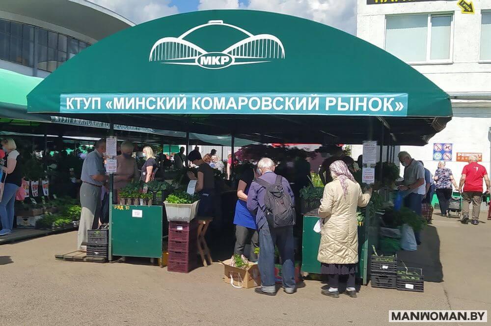 komarovskij-rynok-pokupka-ovoshhej-fruktov-yagod_4