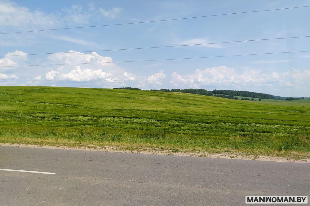 dubrovskoe-vodoxranilishhe-platnyj-plyazh_33